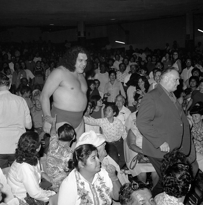 The Eighth Wonder Of The World Andre The Giant